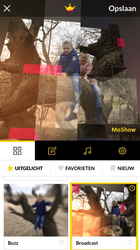MoShow staand 2