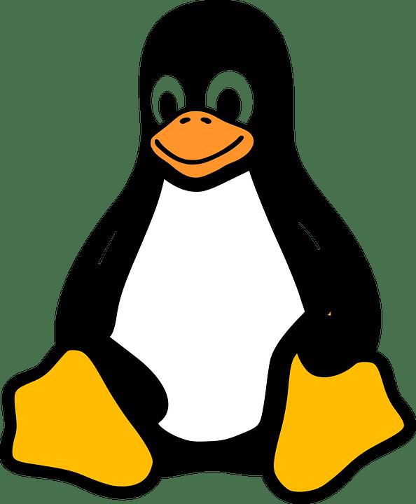 linux 2025130 960 720