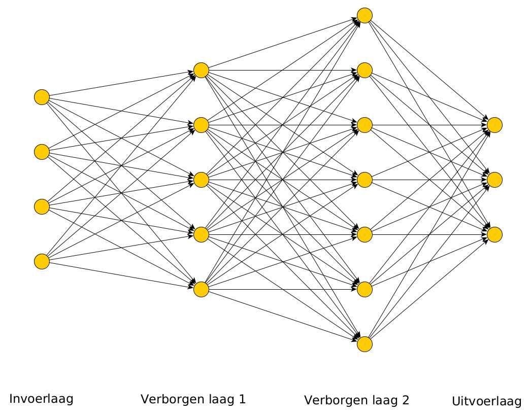 neuraal netwerk