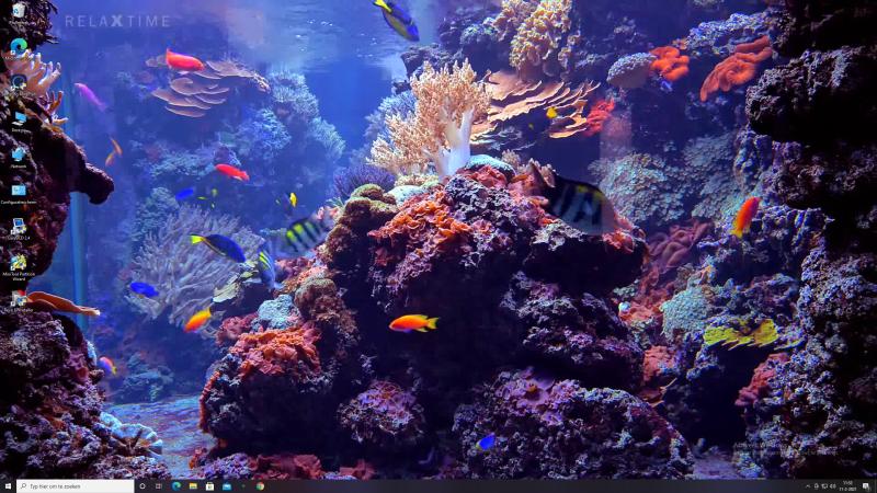 Screenshot aquarium wallpaper